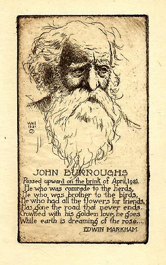 john burroughs american naturalist and essayist